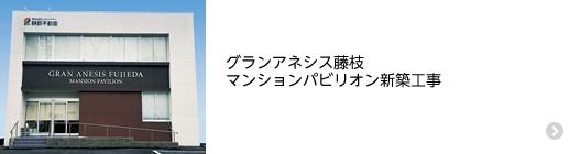 グランアネシス藤枝 マンションパビリオン新築工事